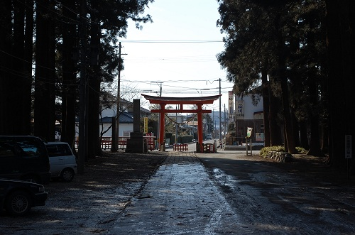 Another torii gate!
