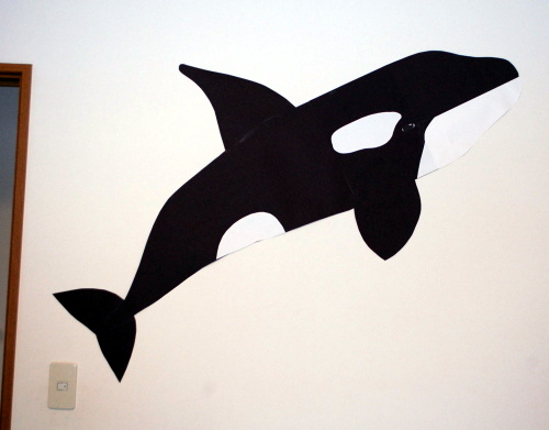 Orca on the wall and I wanna touch it!