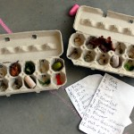 Egg Carton Scavenger Hunt