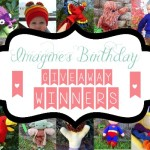Pattern Giveaway WINNERS!